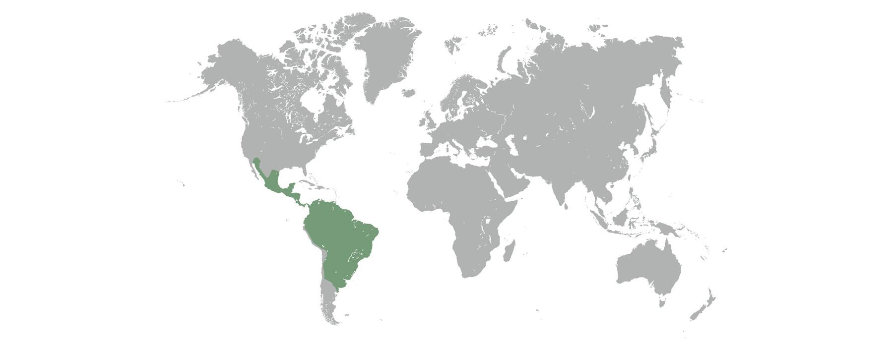 Karte, die den natürlichen Lebensraum der Pekaris zeigt