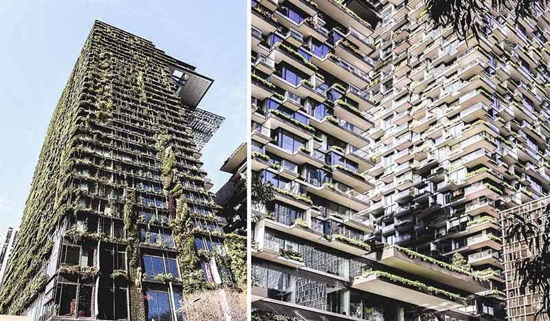 Blick auf die vertikalen Gärten, die das Hochhaus One Central Park in Sydney umgeben.