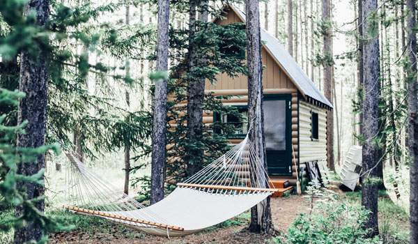Cabin in the woods with hammock between to trees