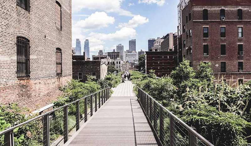 Blick auf den Highline Park mit New Yorks imposanter Skyline im Hintergrund.