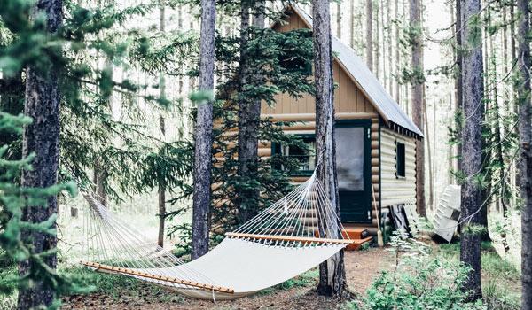 Hütte im Wald mit einer Hängematte, die zwischen zwei Bäumen gespannt ist.