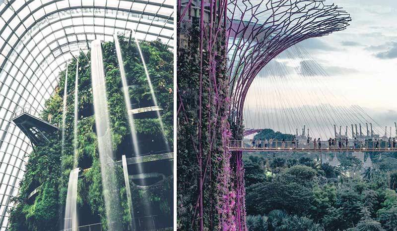 Blick auf den Supertree Grove und den Cloud Forest, einem rießigen Gewächshaus in Singapore.