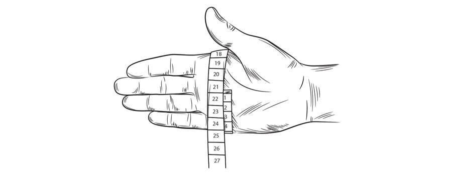 Handschuhgröße Illustration